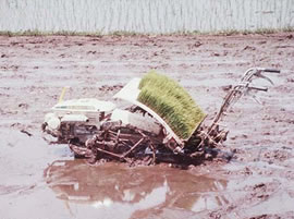 A hand-pushed rice transplanter sits buried in a muddy field.
