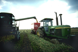 Two large tractors are working in a green field.