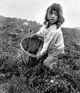 An elementary age  girl working in the fields